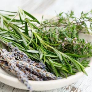 Erbe del benessere:la riscoperta delle erbe spontanee