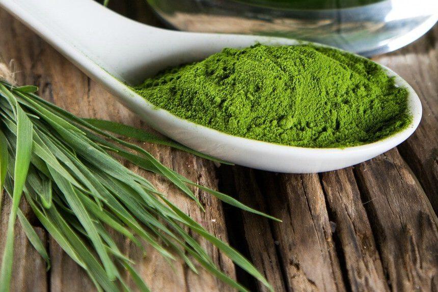 La magia dell'alga spiriluna: l'alimento perfetto per l'essere umano