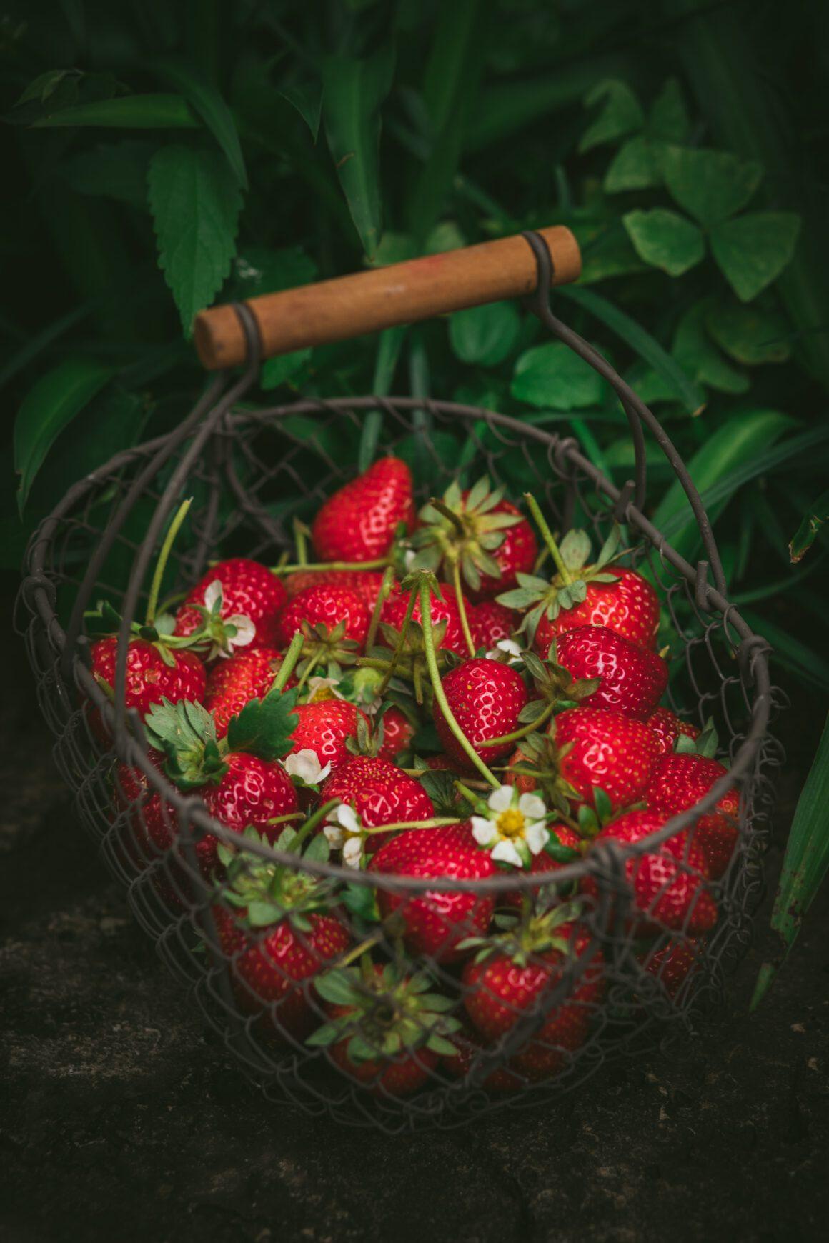 I fiori dell'amore: le fragole, le potenti anti-age e non solo